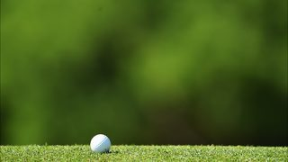 Gator eats golfer