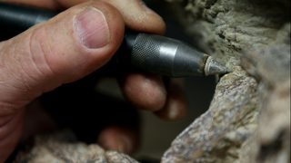 Researchers discover 'Australia
