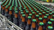Bottles of beer move down a conveyor belt at Terrapin Beer Company.