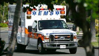 Women, children injured after fleeing teens crash stolen SUV at St.…