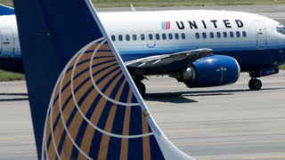 Giant 3-Foot Rabbit Found Dead On United Airlines Flight