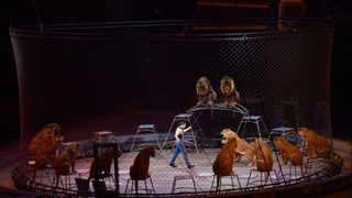 End of an era as Ringling Bros. gears up for last two shows