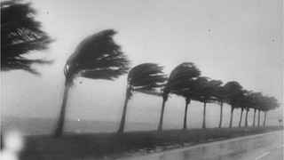 9 Ways to Prepare Your Home for Hurricane Season