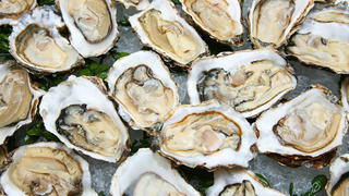 Man dies after eating raw oysters at Florida restaurant, report says