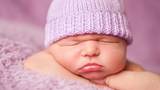 Knitters Needed To Create Purple Caps For Babies
