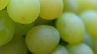 Boy, 2, Chokes To Death On Grape At Grocery Store