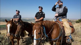Humorous warning to protect horses during solar eclipse goes viral