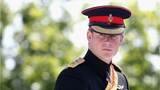 Prince Harry Fast Facts