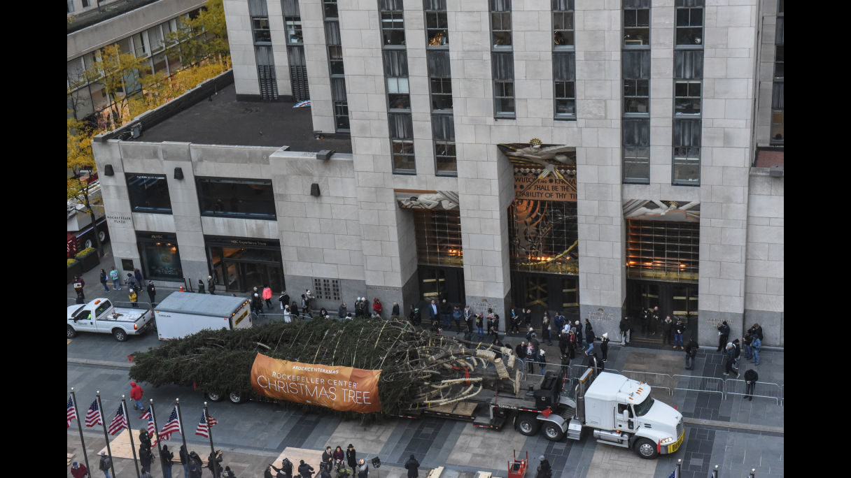 Photos: Rockefeller Center Plaza Christmas tree arrives in New ...