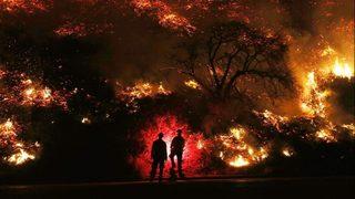 Firefighter dies battling California blaze