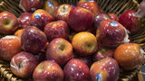 (File photo) Aldi has issued a recall of some of its apples.