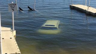 Cadillac Escalade Gets Backed Up Into Florida Lake By Driver
