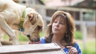 Delta tightens restrictions on emotional support animals