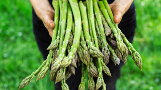Amino acid in asparagus could cause cancer to spread, study says
