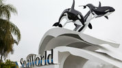 ORLANDO - FEBRUARY 24: The sign at the entrance to SeaWorld February 24, 2010 in Orlando, Florida.