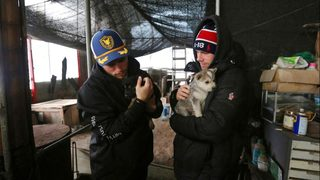 Olympian Gus Kenworthy rescues puppy from Korean dog meat farm