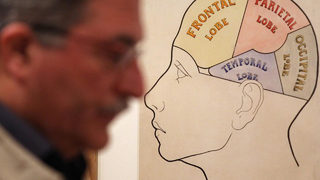 Startup offering to preserve brain with