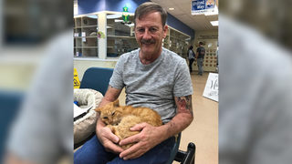 Cat reunited with owner 14 years after hurricane disappearance