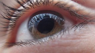A cure for blindness? Stem cell therapy shows promising results