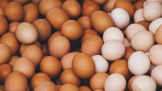 Publix customers react to egg recall following possible salmonella contamination