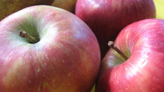 Why did free apple cost a woman $500?