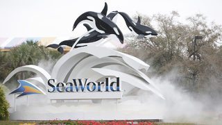 SeaWorld, Busch Gardens: Free admission available for veterans now through July 4