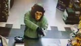Man In Gorilla Mask Robs Convenience Store In Alabama