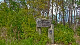 Guide to Orlando national parks