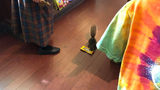 WATCH: Adorable Shoplifter Caught at Disney's Magic Kingdom