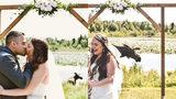 Moose Crashes Alaskan Wedding, Photobombs Newlyweds
