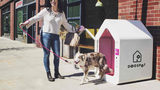 Company Offering Safe Place For Pups to Beat The Heat