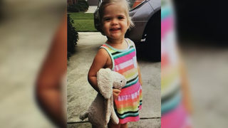 Missing bunny returned after Publix employees comb though landfill to find lost stuffed animal