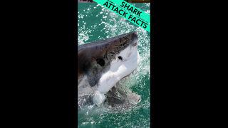 Fisherman hooks, tags 'massive