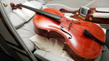Musician Jingjing Hu said she bought a plane ticket for her cello during a trip from Chicago to Miami for a music festival. She said American Airlines booted her off the return flight after saying the aircraft could not accommodate the instrument.