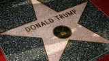 The West Hollywood City Council is voting Aug. 6 on a resolution to urge the removal of Donald Trump's star on the Hollywood Walk of Fame. (Photo by Vince Bucci/Getty Images)