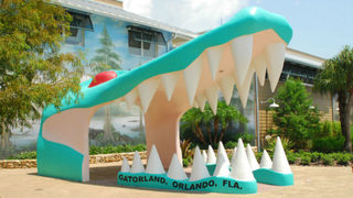 Zip line at Gatorland in Orlando: Know before you go