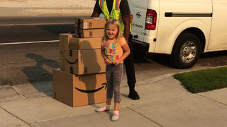 Girl secretly buys $350 in toys on mom