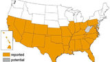 mine bug reports per state. (U.S. Centers for Disease Control and Prevention)