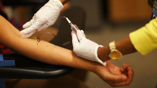 Immediate need for type-O negative blood donors in Boston