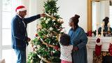 Amazon Shipping Live Christmas Trees This Season