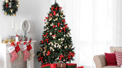 FILE PHOTO: Amazon will be helping shoppers deck the halls as the company starts offering live 7-foot Christmas trees.