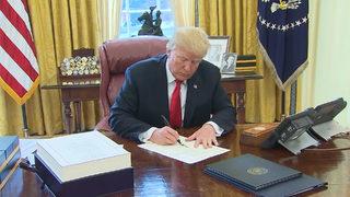 WATCH: Disney pass holder hangs Trump re-election banner in Magic Kingdom