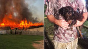 At least five dachshunds were killed Thursday in a massive kennel fire. (Photo: Chapman's Dachshund Rescue/WSOCTV.com)