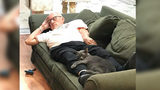 """Cat Grandpa"" Goes Viral For Snuggling With Shelter Pets"