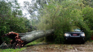 Hurricane safety:Who