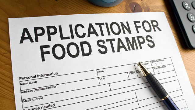 how to get food stamps in michigan