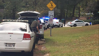 Georgia police officer shot, killed; police searching for suspects