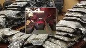 Authorities found $840,000 worth of marijuana in a drug bust in Memphis, Tennessee. Photo: Fox13Memphis.com