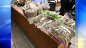 Police displayed marijuana confiscated from a Pennsylvania home.