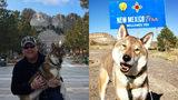 Onward: Massachusetts Mayor Takes Terminally Ill Pup On Bucket List Journey